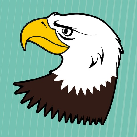 American bald eagle Stock Vector - 10492556