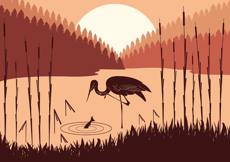 Heron in wild nature foliage illustration Vector