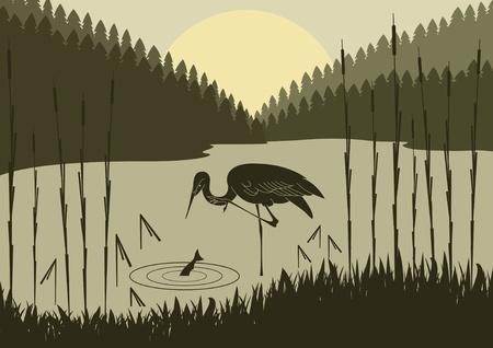 Heron in wild nature foliage illustration  イラスト・ベクター素材