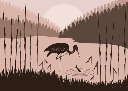 Heron in wild nature foliage illustration Vector