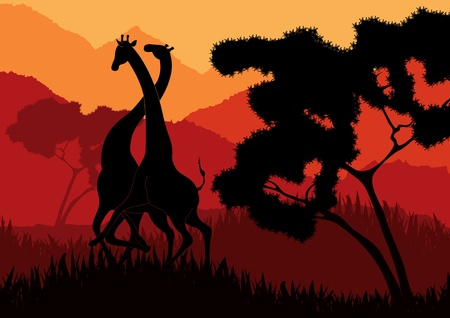 Romantic giraffe couple in wild Africa landscape illustration Vector