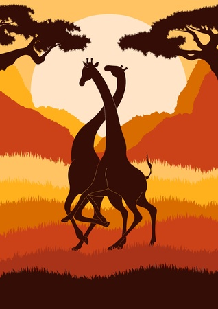 Romantic giraffe couple in wild african foliage illustration Vector