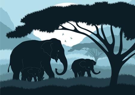 siluetas de elefantes: Familia de elefantes salvajes en el lindo paisaje de África
