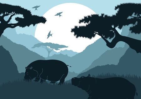 preserve: Animated hippopotamus couple in wild africa landscape
