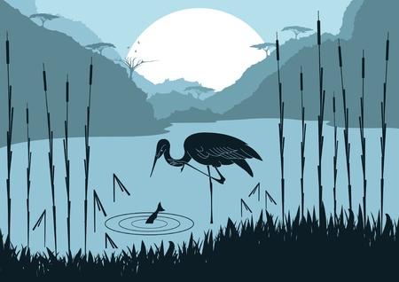 migraci�n: Garza animado caza peces en ilustraci�n de follaje de naturaleza salvaje