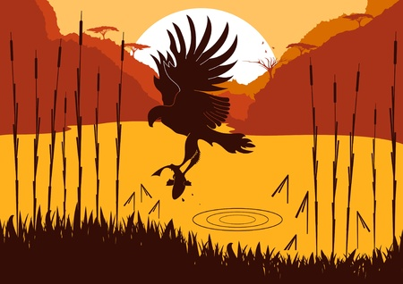 prey: Animated osprey hunting fish in wild nature foliage illustration Illustration