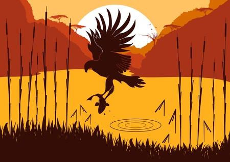 osprey: Animated osprey hunting fish in wild nature foliage illustration Illustration