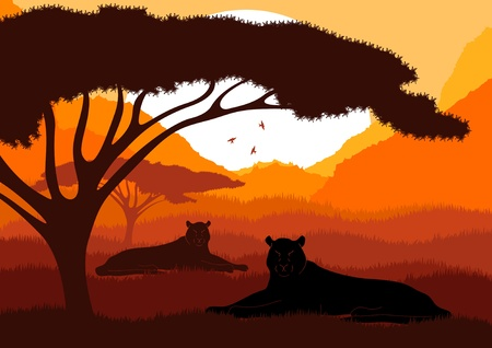 kenya: Animated lions in wild african mountains foliage illustration