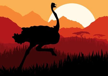 emu bird: Animated running ostrich in wild nature landscape illustration Illustration