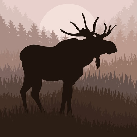 alces alces: Moose animado en la ilustraci�n del paisaje de naturaleza salvaje