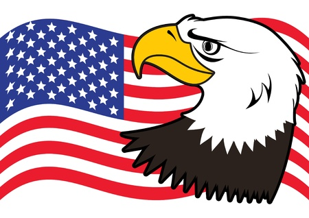 American bald eagle Vector