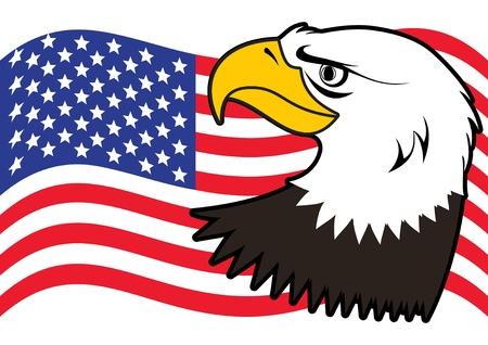 flying stars: American bald eagle