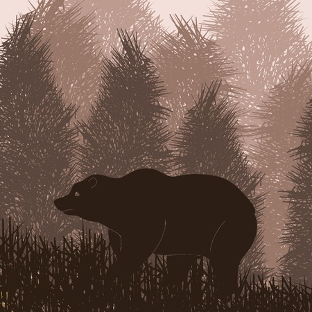grizzly: Animated brown bear in wild forest foliage illustration