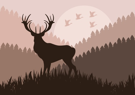 morning sunrise: Animated rain deer in wild nature landscape illustration Illustration