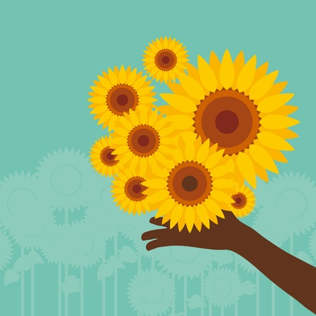 Colorful sunflower illustration Vector