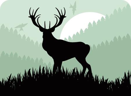 bosbrand: Geanimeerde regen herten familie in wild bos gebladerte afbeelding Stock Illustratie