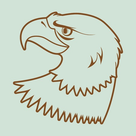 American bald eagle Stock Vector - 10553765