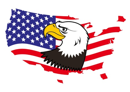 bald eagle: American bald eagle vector Illustration