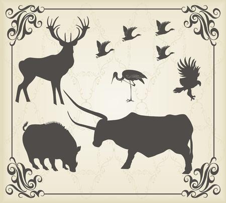 Vintage set of animals into frame Vector