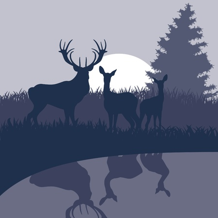 pond water: Rain deer family in wild night forest foliage illustration Illustration