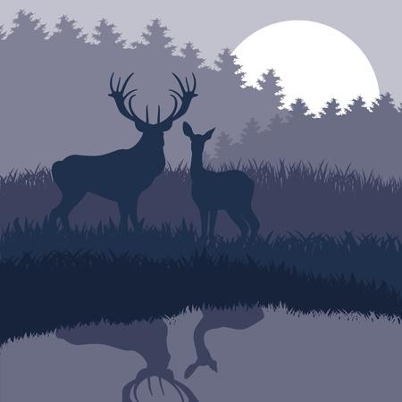 bosbrand: Regen herten familie in wilde nacht bos gebladerte afbeelding Stock Illustratie