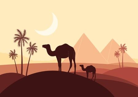 Piramides en kamelen caravan in het wild afrika landschap illustratie