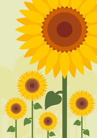 Yellow sunflowers landscape background illustration Vector