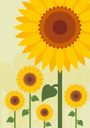 sunflower drawing: Yellow sunflowers landscape background illustration