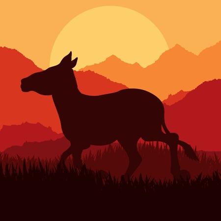 wild donkey: Donkey in wild nature landscape illustration