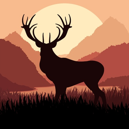 Deer in wild nature landscape illustration Vector