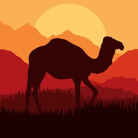 Camello en ilustración de paisaje de naturaleza Africa salvaje