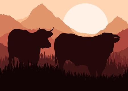 bullock: Beef cattle in wild nature landscape illustration