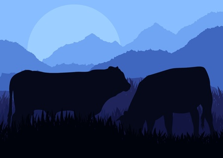 Beef cattle in wild nature landscape illustration Vector