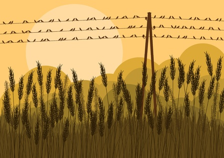 Birds in autumn countryside landscape background illustration Vector