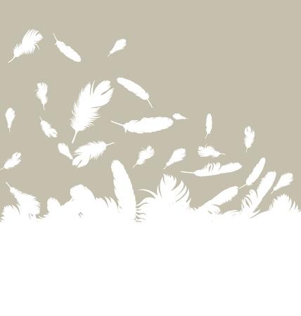 pluma blanca: Pluma de vectores de fondo con copia espacio para el texto