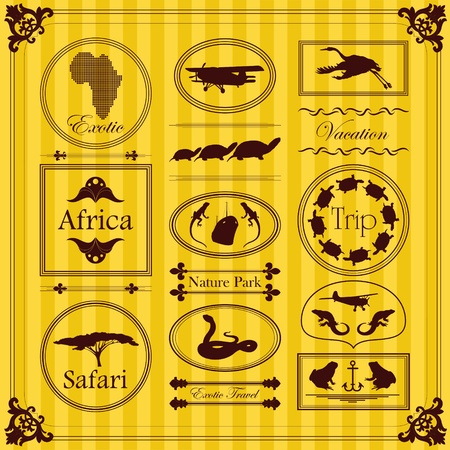 ancient turtles: Vintage Africa labels and elements illustration collection