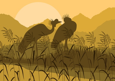 Crane couple in wild nature landscape illustration Vector