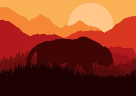 Tiger hunting in wild nature landscape illustration Stock Vector - 11649943