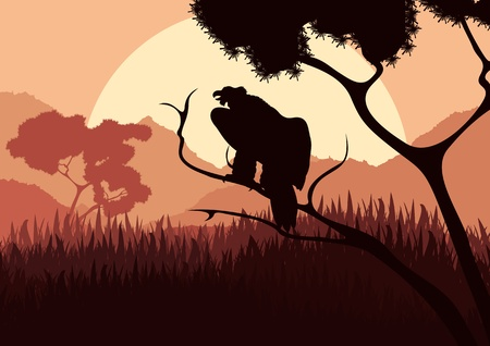Vulture bird hunting in wild nature landscape illustration Vector