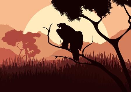 vulture: Vulture bird hunting in wild nature landscape illustration Illustration