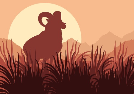 Mountain sheep in wild nature landscape illustration Vector