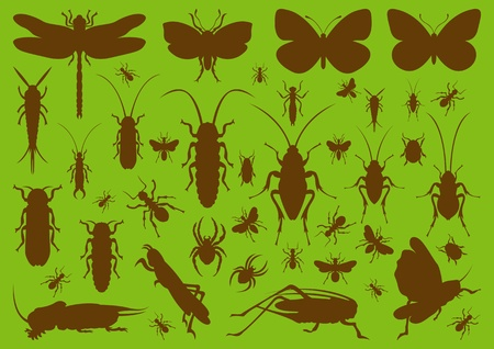 Insects environmental illustration collection background Vector