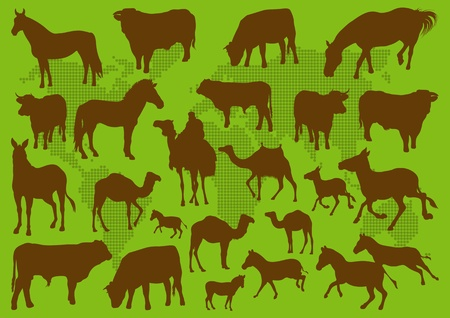 Domestic transport animals illustration collection background Vector