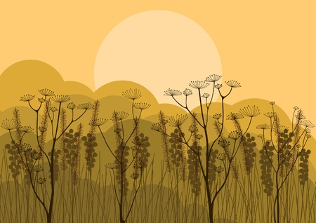 Autumn countryside landscape background illustration Vector