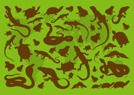 Amphibian reptile environmental illustration collection background Stock Vector - 11649908
