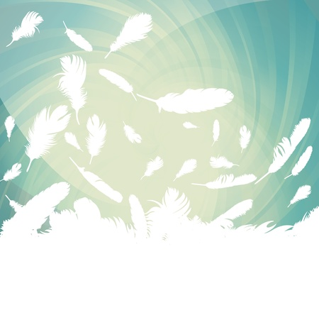 feather vector: Feather vector background with copy space for text Illustration