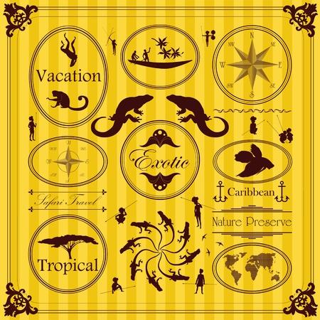 Vintage etichette esotici tropicali e illustrazione elementi della collezione