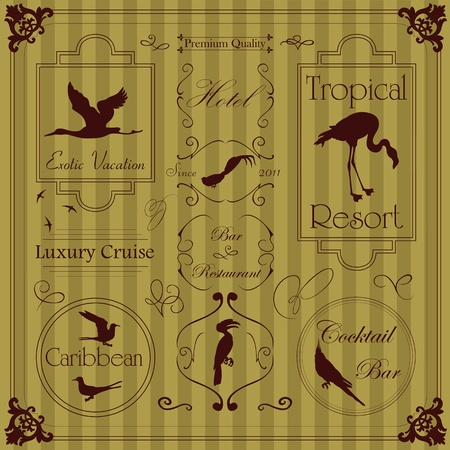 Tropical and exotic frames and elements illustration collection Vector