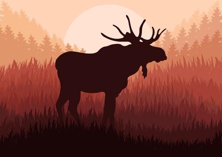 muse: Moose in wild nature landscape background illustration vector