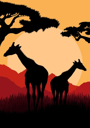 shadow silhouette: Giraffe family silhouettes in Africa wild nature mountain landscape background illustration vector Illustration